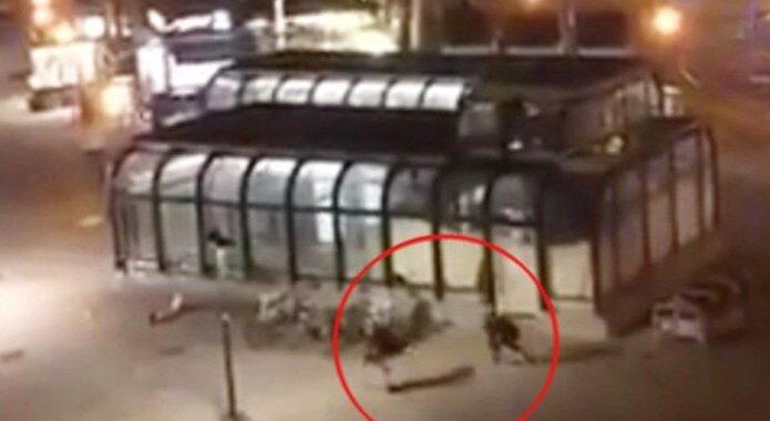 Dos peleadores de MMA le salvan la vida a un policía durante el ataque terrorista en Viena